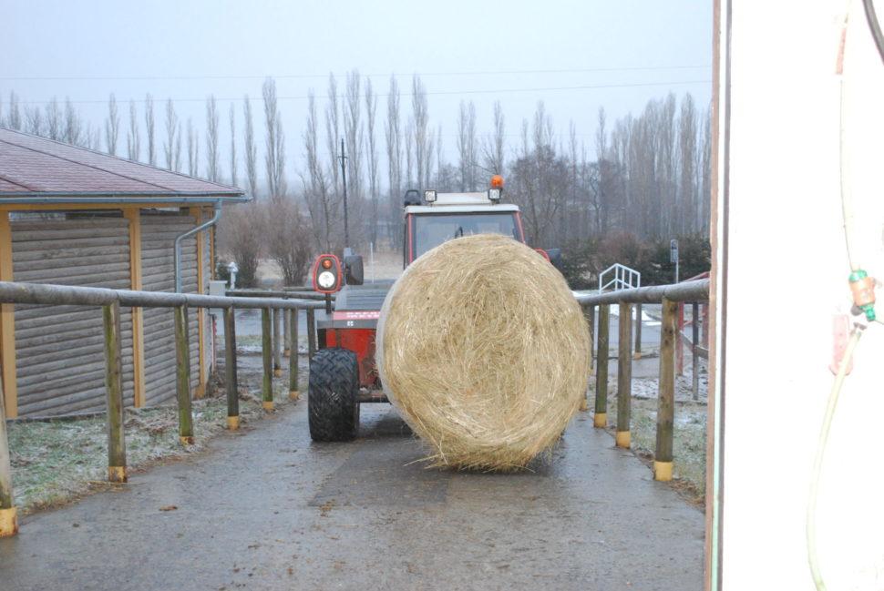 Dovoz sena dostáje ve Světlé Hoře zajišťuje horský traktor Reform Metrac