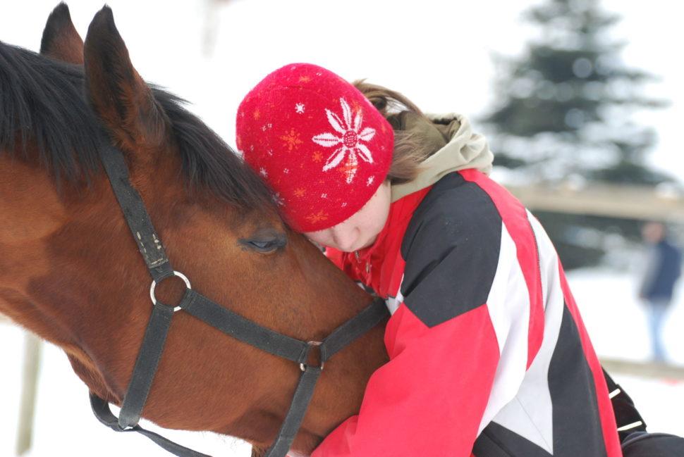 O koně je ve Světlé Hoře pečováno sláskou